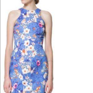 Zara Floral Sheath Dress Size M (fits S)